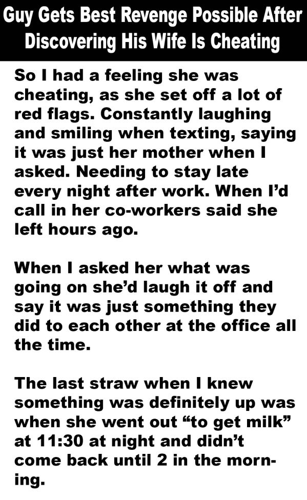 This Guy Got The Ultimate Revenge On His Cheating Wife (5 pics)