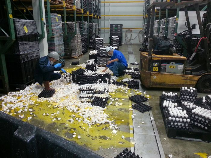 These People Are Having A Really Bad Day At Work (4 pics)