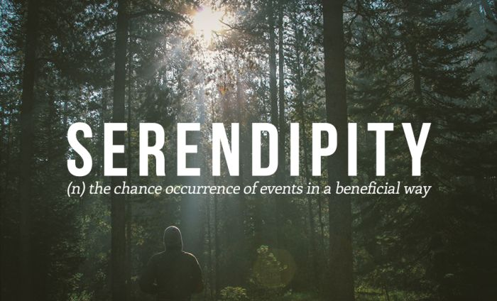 These Are The 32 Most Beautiful Words In The English Language (32 pics)