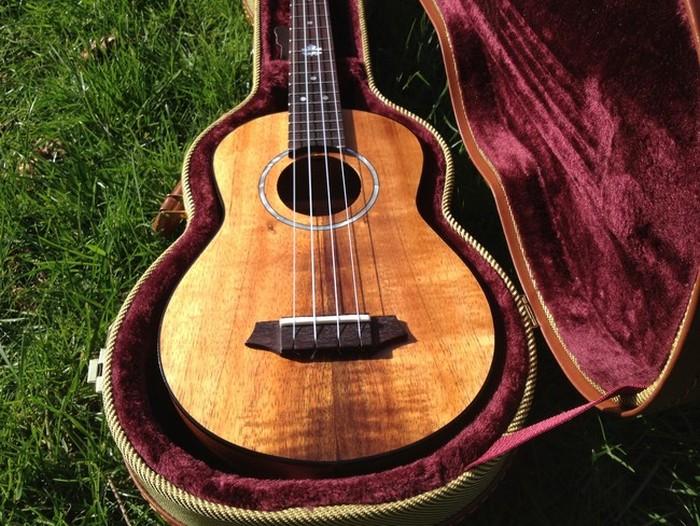 DIY Guitar (16 pics)