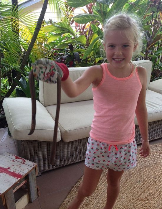 Australia Has Earthworms The Size Of Snakes (3 pics)