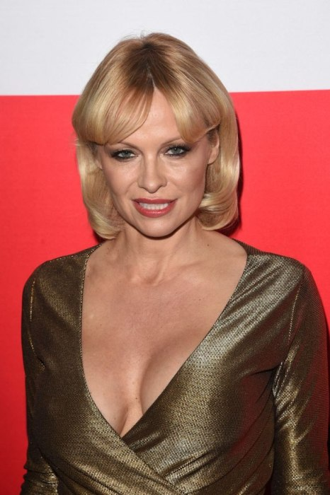 Pamela Anderson Recently Hit The Red Carpet And She Looks Stunning (8 pics)