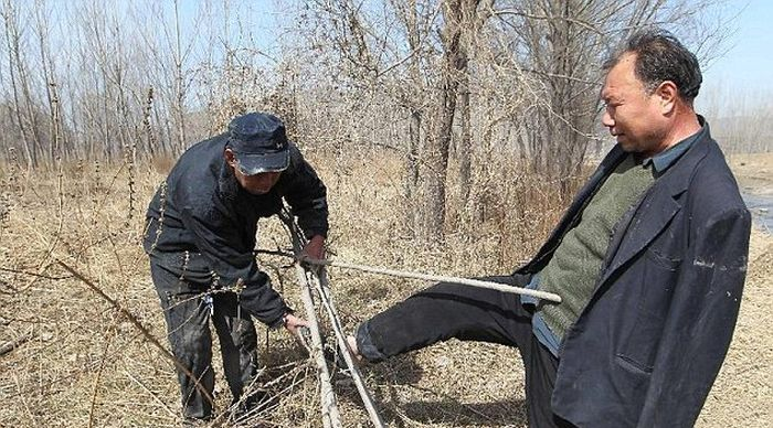 This Blind Man And His Friend With No Arms Planted 10,000 Trees In China (7 pics)