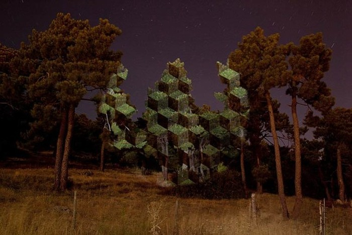 Javier Riera Is Turning Trees Into Surreal Art (16 pics)