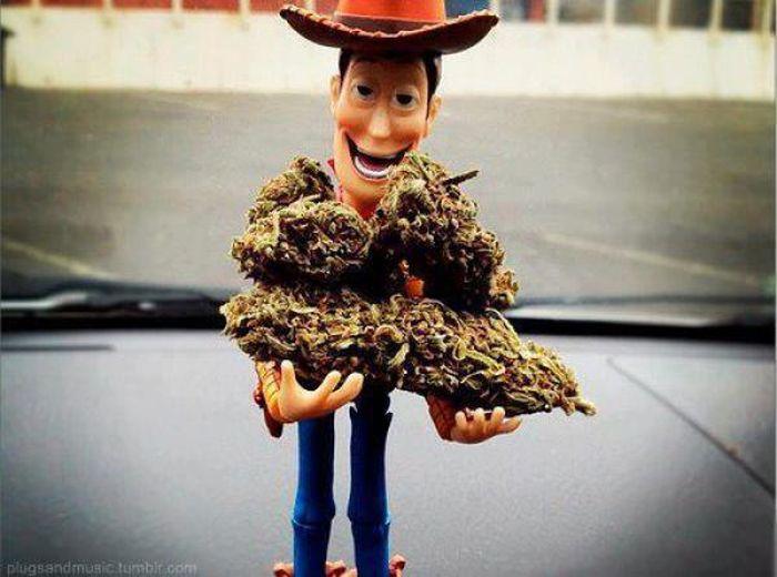 Facts About Marijuana (24 pics)