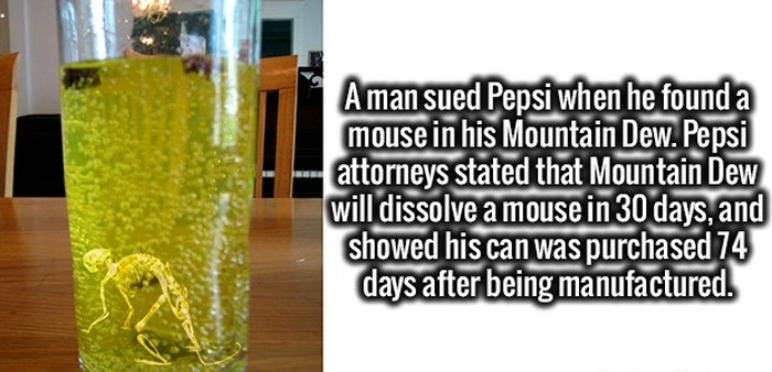 Get Your Daily Dose Of Education With These Fun Facts (25 pics)