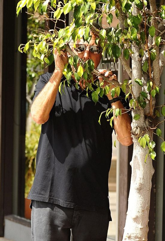 Dustin Hoffman Plays Hide And Seek On The Streets Of LA (5 pics)