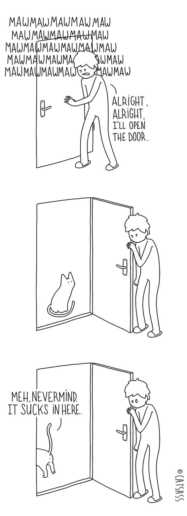 What Your Cat Is Really Trying To Tell You (14 pics)