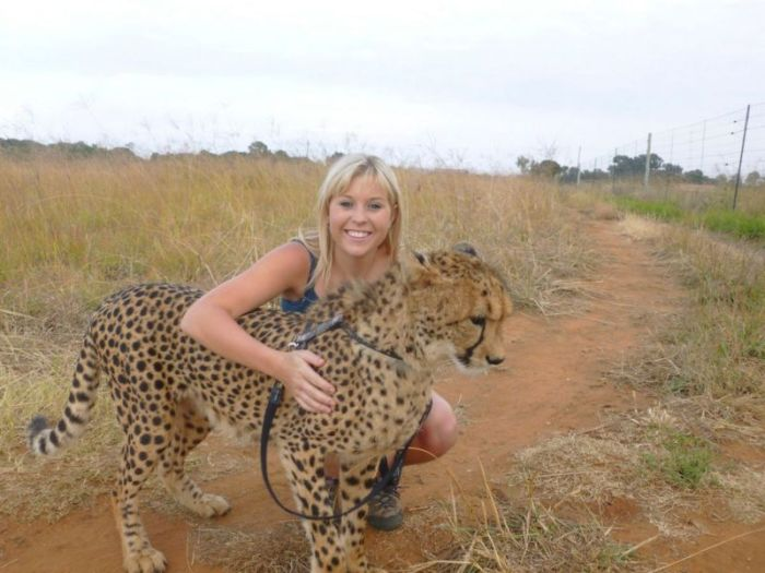 This Girl Is A Real Life Cheetah Whisperer (10 pics)
