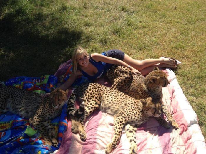 This Girl Is A Real Life Cheetah Whisperer (10 pics)