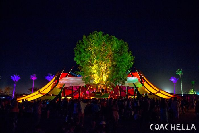 Coachella Has Become The Ultimate Destination For Festival Lovers (40 pics)