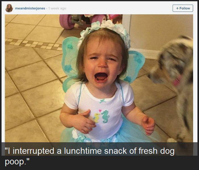 Unreasonable Kids (12 pics)