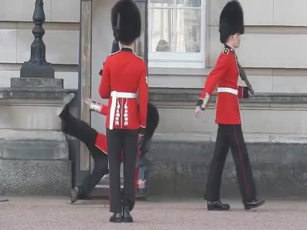 Buckingham Palace Guard Fall