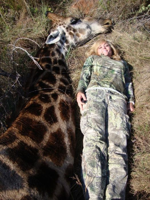 A Hunter Is Getting Death Threats After Taking A Photo A Dead Giraffe (14 pics)