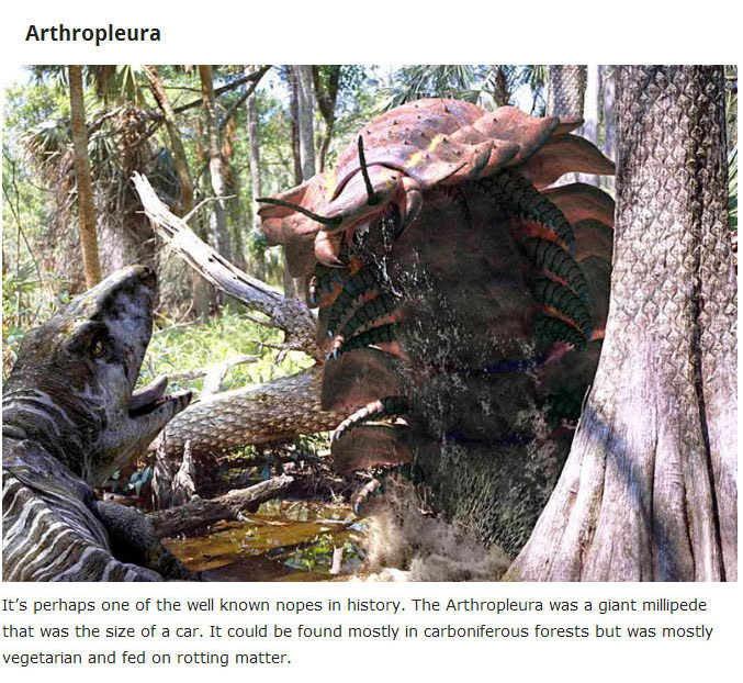 10 Extinct Creatures That Will Haunt Your Dreams (10 pics)