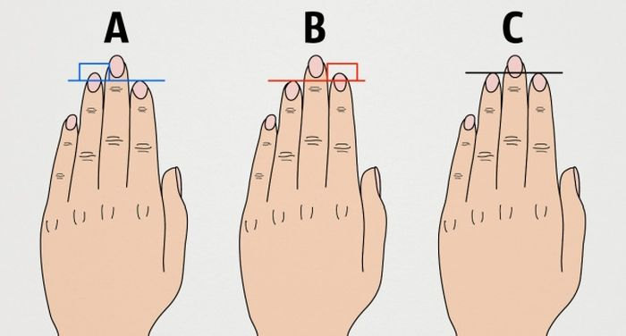 This Is What Your Finger Length Can Reveal About Your Personality (3 pics)