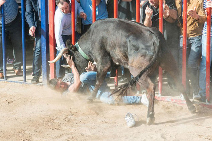 Man Gets Gored By A Bull On A Rampage (5 pics)