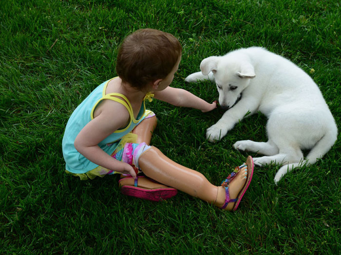 3 Year Old Girl With No Feet Gets A Puppy Without A Paw (8 pics)