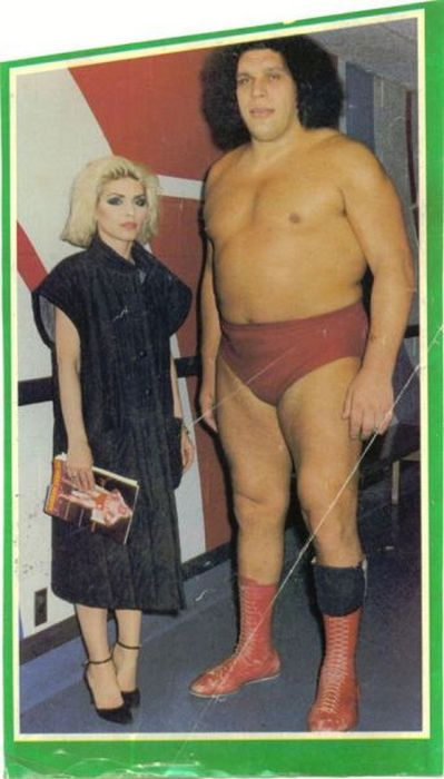An Awesome Tribute To The Legendary Andre The Giant (18 pics)
