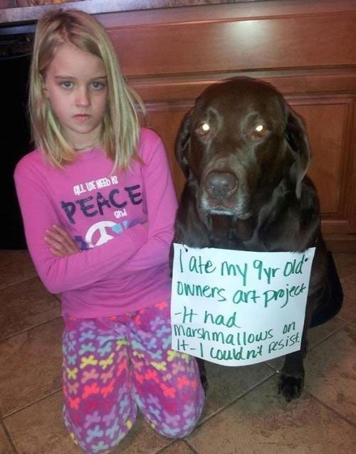 Kids Who Were Clever Enough To Outsmart Their Teachers (19 pics)