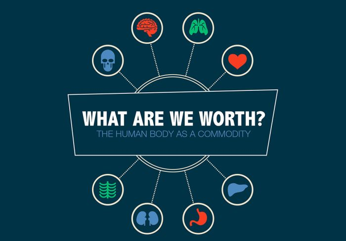 How Much The Human Body Is Really Worth (infographic)