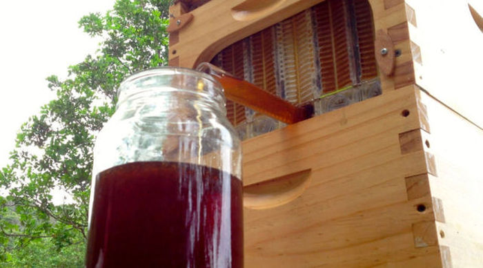 If You Want Honey On Tap This Is The Beehive For You (14 pics)