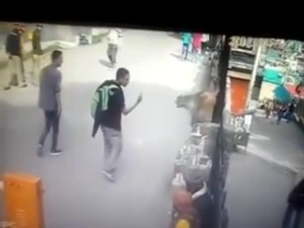 Monkey Punished Guy