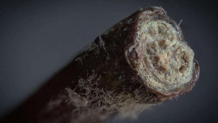 Extreme Close Ups Of Everyday Household Items (18 pics)