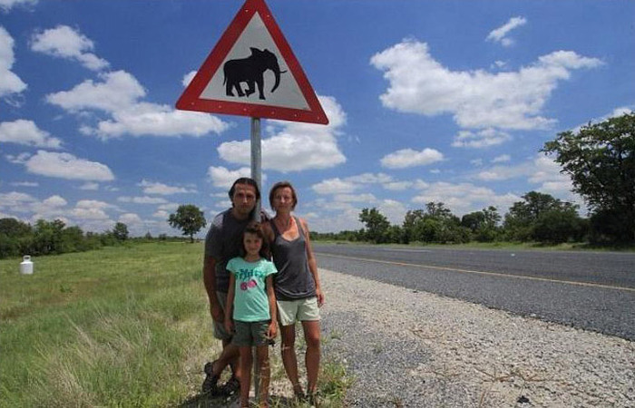 This Family's Car Got Crushed By Elephants (4 pics)