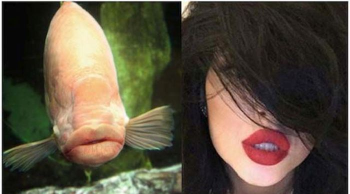 The Kylie Jenner Lip Challenge Continues To Give Girls Fish Lips (14 pics)