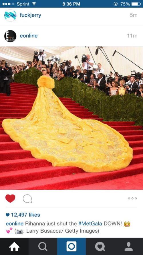 Internet's Reaction To Rihanna's Met Gala Dress (24 pics)
