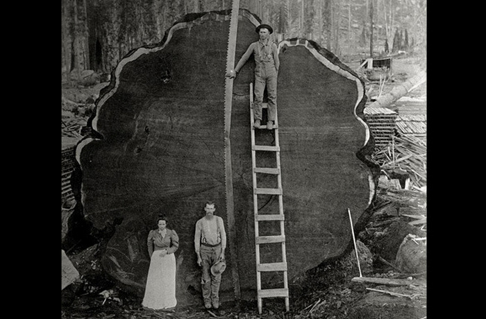 10 Giant Sized Historical Photos (10 pics)