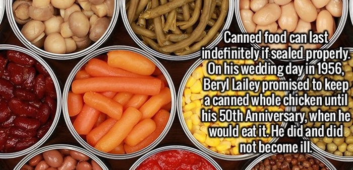 Make Yourself Smarter By Learning These Fun And Interesting Facts (20 pics)