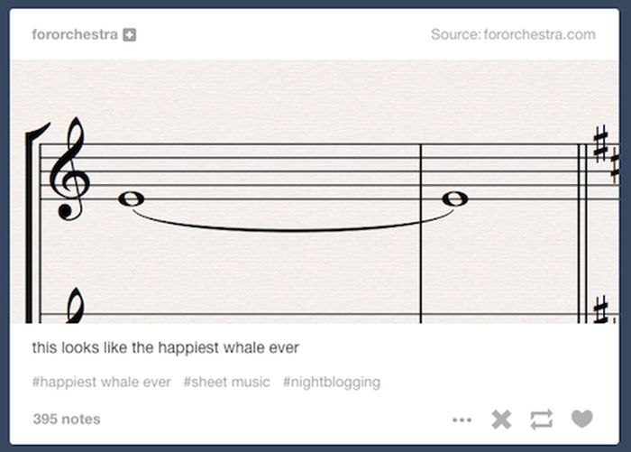 Times When Tumblr Got Weird In A Wonderful Way (20 pics)