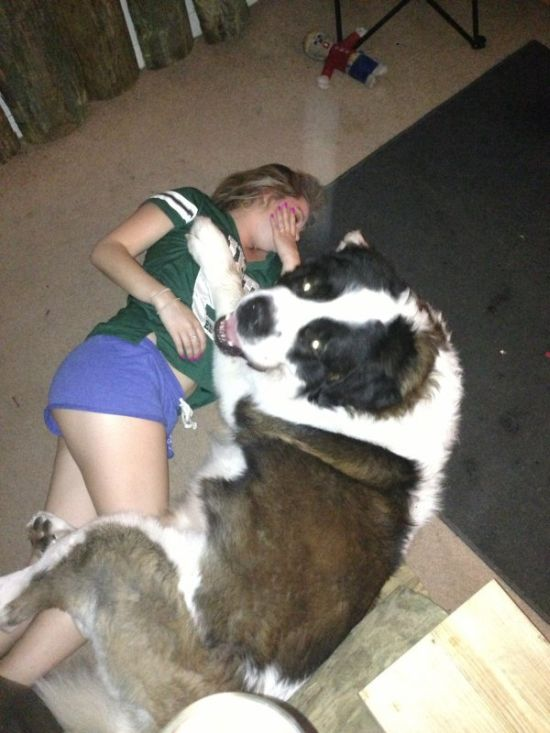 These Animals Clearly Don't Know The Meaning Of Sexual Harassment (22 pics)