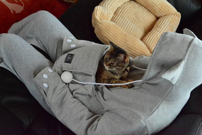 This Cat Hoodie Has A Kangaroo Pouch So You Can Take Your Pet Everywhere (12 pics)