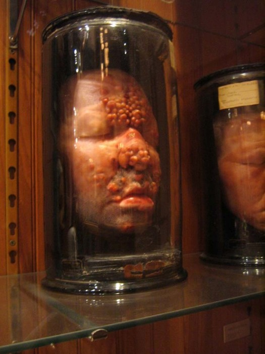 This Museum Is Like A Nightmare Come To Life (16 pics)