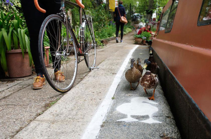 The Canal Walkways In London Now Have Duck Lanes (6 pics)