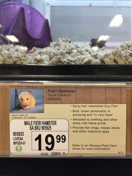 Local Pet Store Gets Hilarious New Labels With New Pet Names (8 pics)