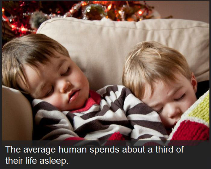 These Facts About The Human Race Might Surprise You (18 pics)