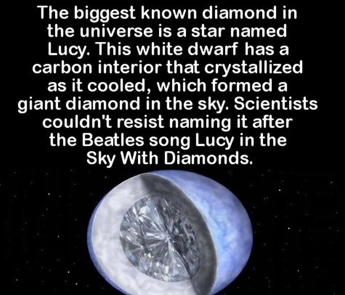 Impress Your Friends With These Fun And Interesting Facts (23 pics)