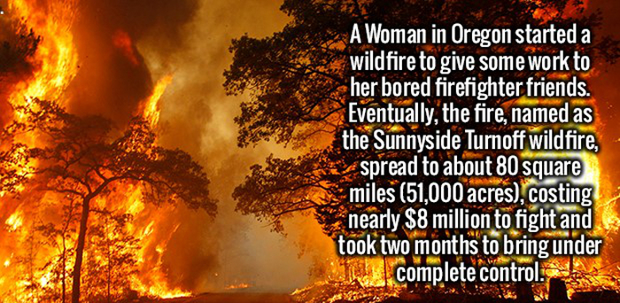 Get Ready For A Nice Serving Of Random Facts To Feed Your Brain (19 pics)