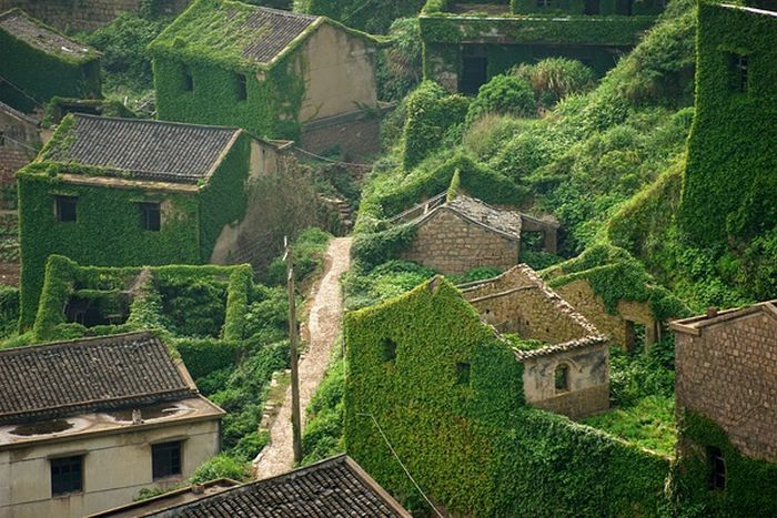 This Abandoned Chinese Fishing Village Has Been Reclaimed By Nature (3 pics)