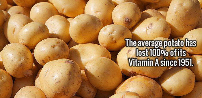Time To Load Up Your Brain With More Random Facts (20 pics)