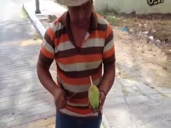 Great Mango Cutting Style