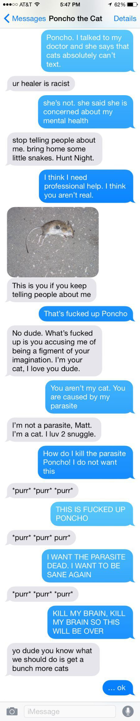 Man Tries To Prove He's Not Insane By Texting With His Cat (4 pics)