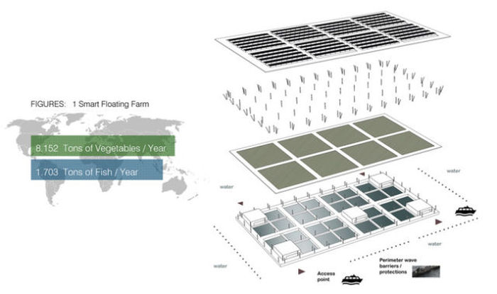 Could This Floating Solar Farm Be The Farm Of The Future? (7 pics)