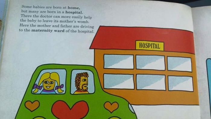 This Graphic Kids Book From 1975 Shows How Babies Are Made (17 pics)