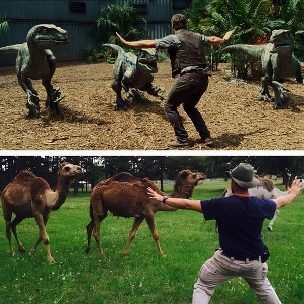 "Zoo Staff Are Re-Creating ""Jurassic World"" With Their Animals  (20 pics)"