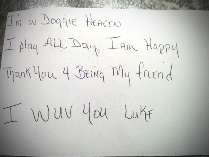 Mother And Son Were Shocked To Receive A Letter From Their Dog In Heaven (2 pics)
